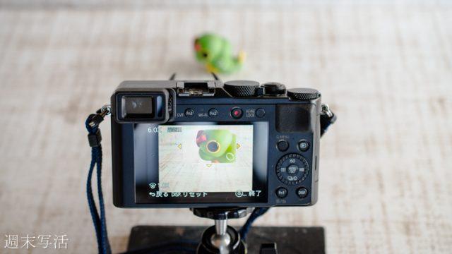 昆虫撮影中の画像
