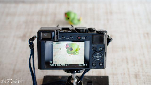 昆虫撮影の方法