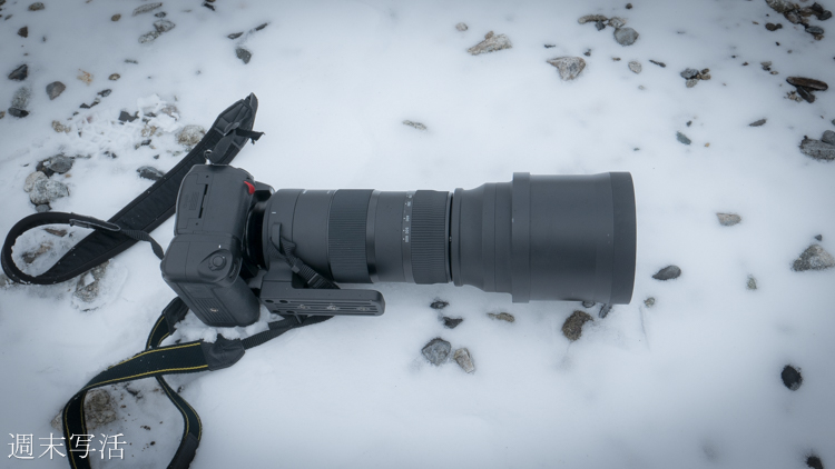 シグマ150-600mmスポーツでの作例