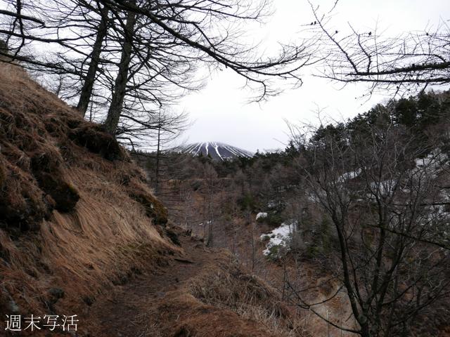 浅間山登山道の写真