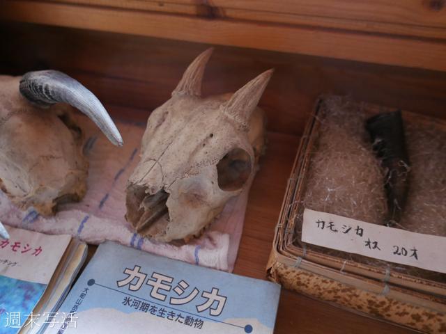 浅間山の火山館の写真