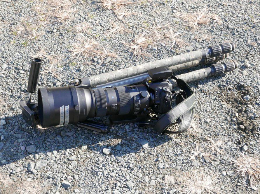野鳥撮影機材