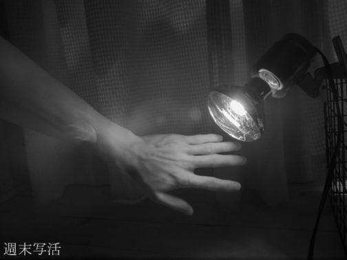 赤外線電球