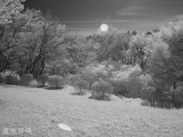 赤外線風景写真